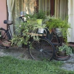 Bicicletta vaso fiori