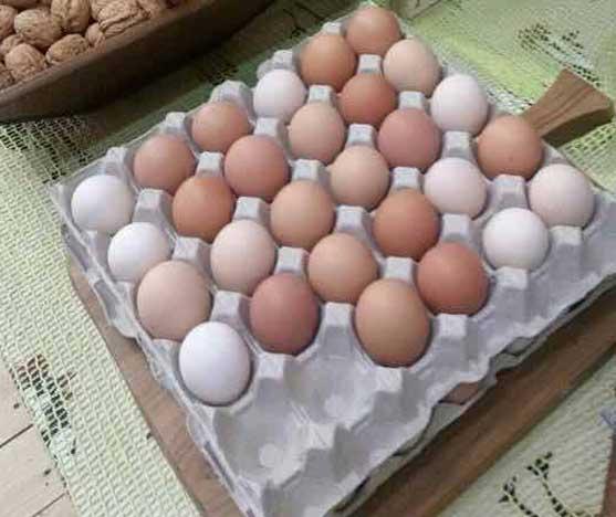 Uova di galline allevate a terra della Bottega del Contadino